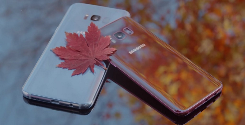 Samsung Galaxy S8_Burgundy Red